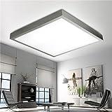Stylehome 24W 480mm LED Deckenlampe Deckenleuchte Küchenlampe Wandlampe Schlafzimmer Wohnzimmer Diele Keller Alurahmen X007-Warmweiss Silber