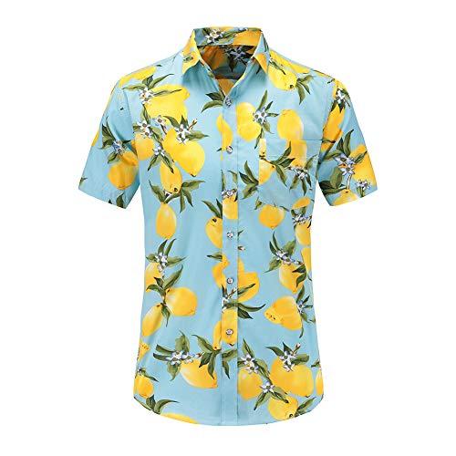 GZYD Herrenhemd Kurzarm Zitrone drucken Schmales T-Shirt Revers Taste Strickjacke Sommer- Mode Tropischer Stil Strand Urlaub T-Shirt,02,XL