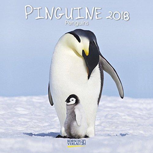 Pinguine 2018: Broschürenkalender mit Ferienterminen. Lustige Bilder der Eis-vögel. 30 x 30 cm