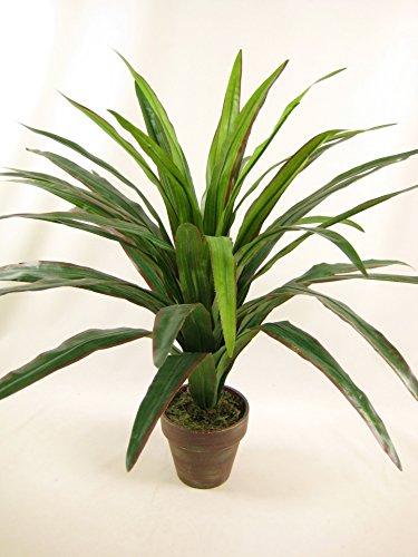 Seta artificiale in vaso, pianta Dracaena, colore: marrone
