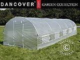 Dancover Foliengewächshaus 3x8x2m, 24m², Durchsichtig