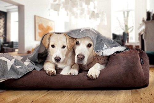tierlando® M4-C-02 Hundebett MORITZ aus robustem CODURA Hundesofa Hundekorb Gr. L 100cm GRAPHIT/GRAU - 3