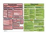 ICD 10 - Lerntafel psychischer Störungen