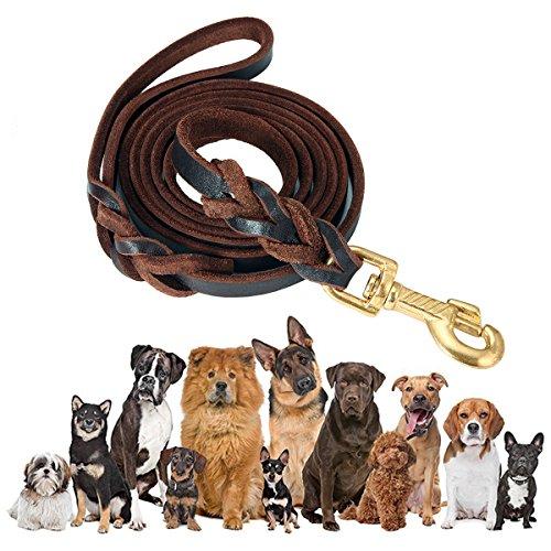 Hundeleine Leder, Focuspet Geflochtene Wasserdichte Hundeleine Führleine Leder Hundeleine DogLeash Für Große mittelschwere Hunde