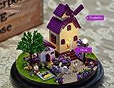 Axcone DIY-Set Miniatur-Puppenhaus mit Transparenter Kuppel holzspielzeug LED-Licht Spieluhr für Jungen und Mädchen Zum Spielen Miniatur Kreativ Geburtstag Weihnachts Geschenk-Dunkelrot