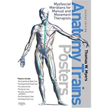 Anatomy Trains. 7 Posters: Myofascial Meridians for Manual and Movement Therapists