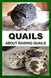 Quails: About Raising Quails