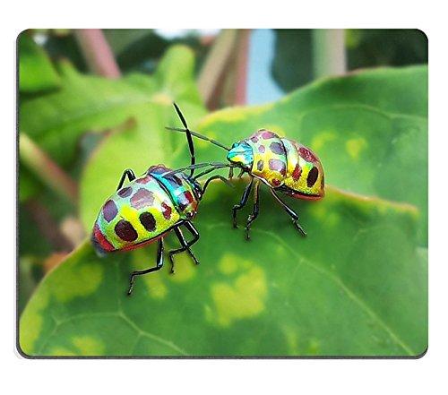 liili-mouse-pad-natural-rubber-mousepad-image-id-33617103coleotteri-coccinella-su-foglie-verdi