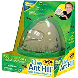 Ant Hill by Insect Lore