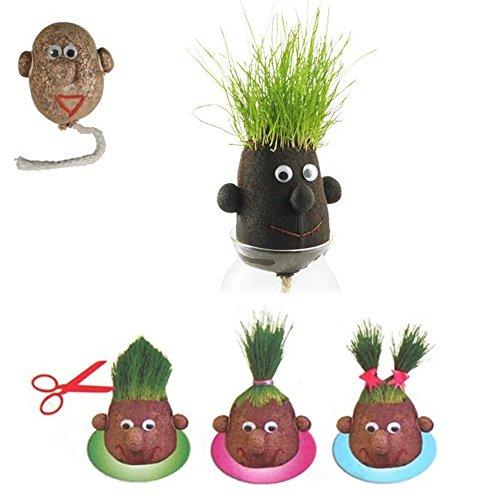 monsieur-herbe-grasshead-petit-modele-de-5-cm-faites-pousser-ses-cheveux-et-couper-lui-cadeau-nature