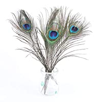 Esoes Peacock Feathers,20pcs Natural Peacock Feather with Eye 10-12inch(25-30cm) Fashion Peacock Tail Feathers for Hair Accessories Home Wedding Decoration Party DIY Crafts Art