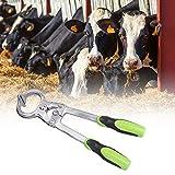Jadpes Strumento per forcipe Veterinary Yak forcipe, HL-Q2 Veterinary Carbon Steel Bull Toro castratore di Mucca Pinze Strumento per castrare