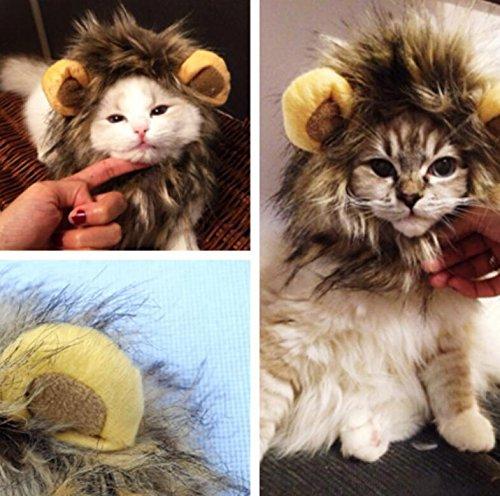 �r Haustiere Perücke Lion Mane für Hunde Kleid Katze Halloween (Gato Halloween)