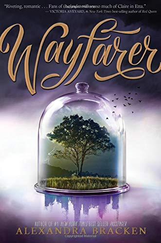 Wayfarer (Passenger, Band 2)