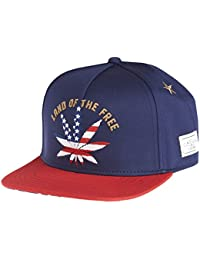 Cayler and Sons Land of the Free Cap Navy Red Gold