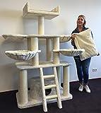 RHRQuality Kratzbaum Grosse Katzen stabil XXL Panther Plus Beige Katzenkratzbaum für schwere Katze hoch