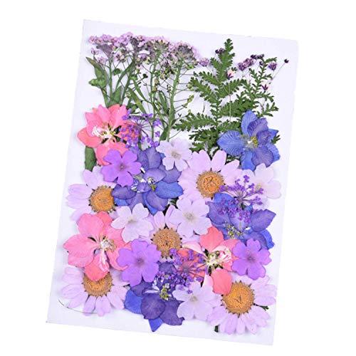 Wohlstand naturali pressati fiori,per mestiere di arte di scrapbooking resina epossidica gioielli che fanno regali diy art craft scrapbooking