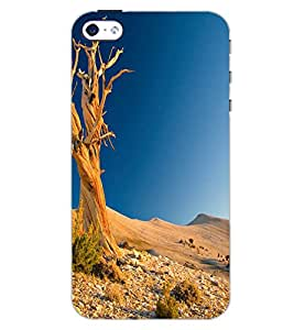 APPLE IPHONE 4 DESERT Back Cover by PRINTSWAG
