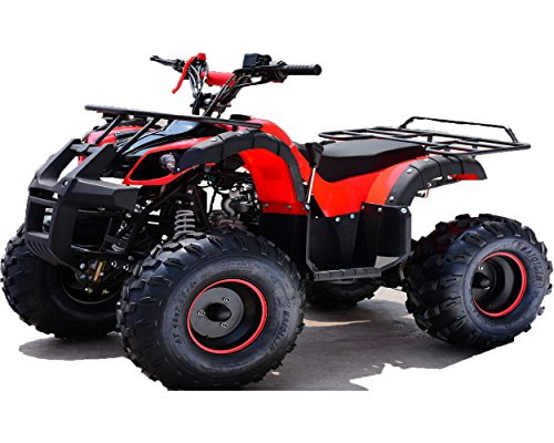 Zoom IMG-1 quad hummer panda 125 cc