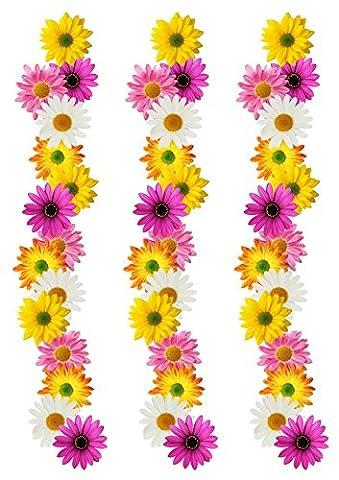 Décoration Comestible Feuille Fleur frontière ruban pour 17,8–20,3cm gâteau–Idéal pour