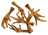 40 X High Quality Dried Natural Chicken Feet