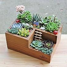 Fioriera da giardino in legno: vaso per piante grasse, aiuola a tre griglie.
