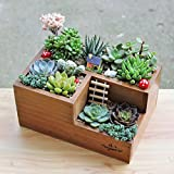 Wooden Garden Window Box Trough Planter Succulent Flower Bed Pot, Three Grid