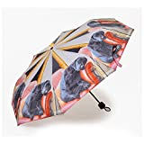 Sleeping Labrador Quality Mini Folding Umbrella (Handbag Size) by COUNTRY MATTERS