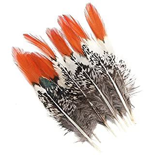 AUAUDATE 10x Natural Amherst Pheasant Feathers Wedding Decor Millinery Craft DIY 10-15cm