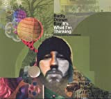 Picture Of It's What I'm Thinking by Badly Drawn Boy