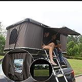 XPHW Auto Dachzelt Automatische Selbstfahrer Tour ABS Hard Shell Outdoor Doppel Wild Auto Dachzelt, geeignet für 2-3 Erwachsene, mit verlängerter Leiter und Camping Lichter
