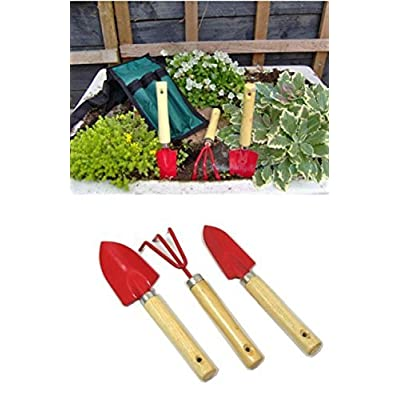 Young Gardener childrens Mini Gardening Tools Gift Set by Young Gardener