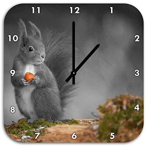süßes Eichhörnchen mit Nuss schwarz/weiß, Wanduhr Quadratisch Durchmesser 48cm mit schwarzen spitzen Zeigern und Ziffernblatt, Dekoartikel, Designuhr, Aluverbund sehr schön für Wohnzimmer, Kinderzimmer, Arbeitszimmer