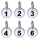Aspire Etiquetas Clave ABS con anillo Etiquetas de identificación numeradas llavero 50 paquetes Plata 1a50