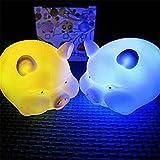 display08süße LED-Lampe, Energiesparlampe, Nachtlicht, als Heimdekoration. schwein