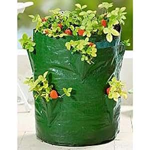 pflanz sack f r erdbeeren 45cm blumen balkon topf pflanzen. Black Bedroom Furniture Sets. Home Design Ideas