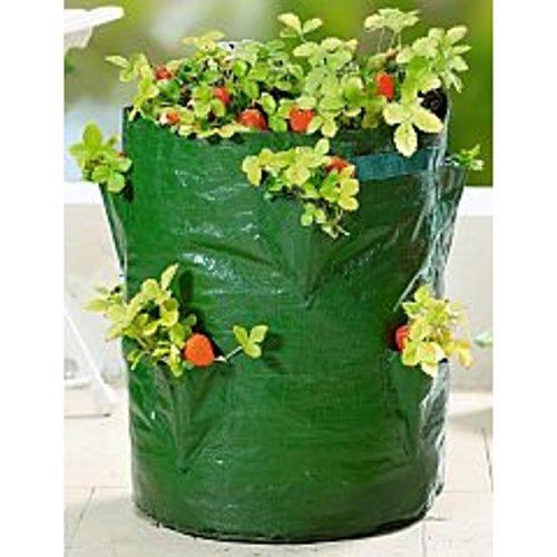 Pflanz-Sack für Erdbeeren 45cm Blumen Balkon Topf Pflanzen Kräuter Ampel Tasche