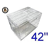 Ellie-Bo cucciolo del cane gabbia pieghevole Crate 2 porta con non-Chew vassoio di metallo Extra Large d'argento da 42 pollici