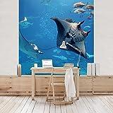 Vliestapete Premium–Manta Ray–Wandbild eckig