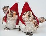2 er Set Figuren' LUSTIGE VÖGEL' - 2 sitzende Vögel mit Mütze - 2 Figuren mit Farbe - sehr detailliert gefertigt - Größe ca. 11 cm x 10 cm x 5 cm - richtig lustige Dekoration für jede Jahreszeit - Neu aus dem KAMACA-SHOP