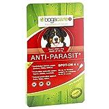 Bogacare Anti-parasit Spot-on Hund gross 4X2.5 ml