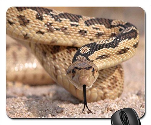 aggressive snake Mouse Pad, Mousepad (Reptiles Mouse Pad) -