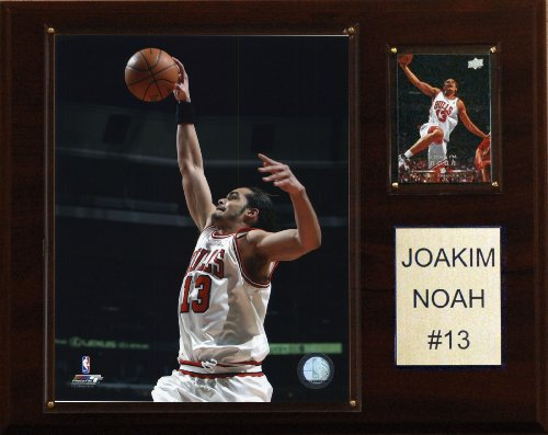 C & I Collectables NBA Joakim Noah Chicago Bulls Player Plakette