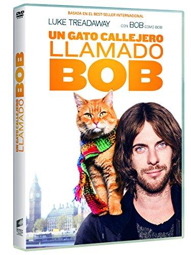 un-gato-callejero-llamado-bob-dvd