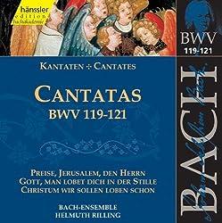 Edition Bachakademie Vol. 38 (Geistliche Kantaten Bwv 119-121)