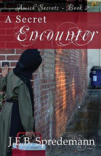 A Secret Encounter Amish Secrets Book 2