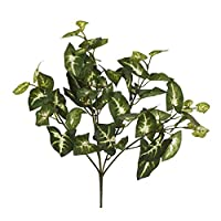 Euro Flora Yapay Bitki Sygonıum Demet 36 Cm