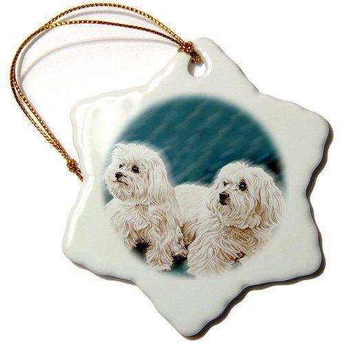 Owen Cocker Porzellanfigur Dogs Malteser - Malteser - Ornamente - 7,6 cm Schneeflocke -