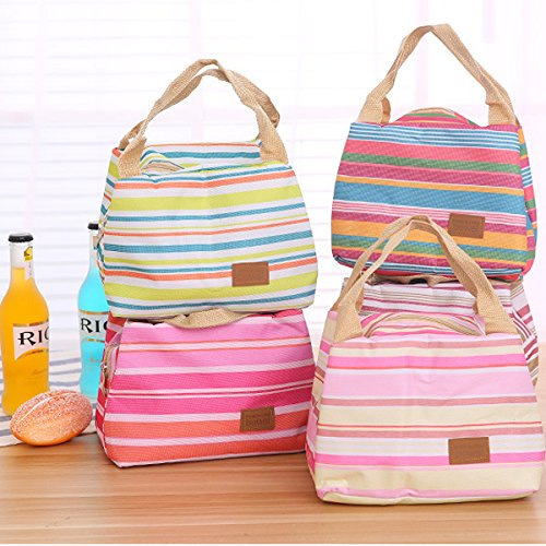 Striped lunch Bags Mejoy lovely picnic Bags lunch box sacchetti con cerniera e manico freddo isolamento termico Grey White Green