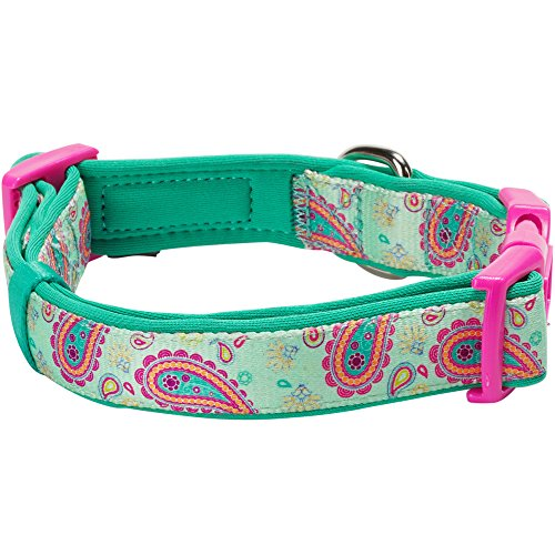Blueberry-Pet-Soft-Comfy-Paisley-Flower-Print-Emerald-Green-Adjustable-Neoprene-Padded-Dog-Collar-Neck-37cm-50cm-Medium-Collars-for-Dogs-Matching-Lead-Harness-Available-Separately